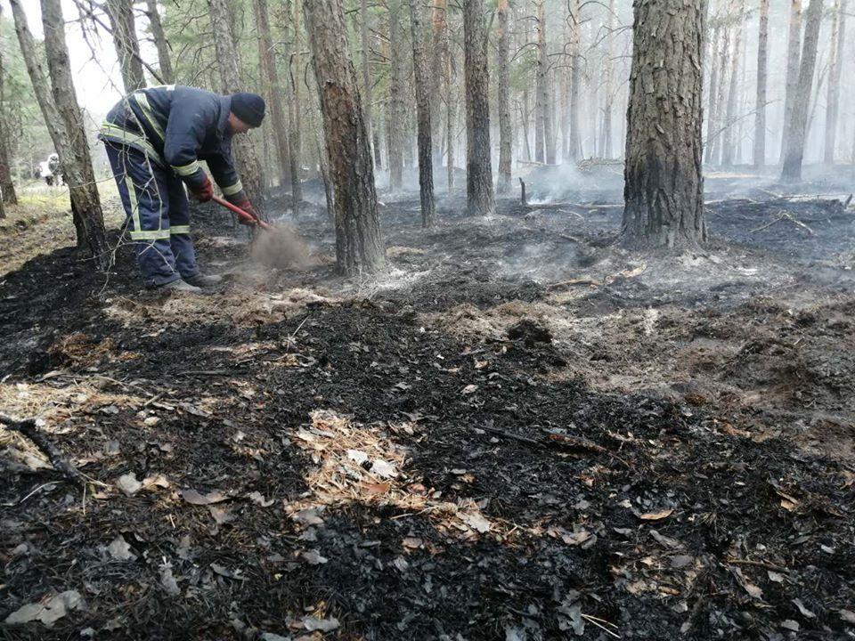 У зоні відчуження ЧАЕС гасять тліючі пеньки та деревину в осередках пройдених вогнем -  - 92952797 3166690416683098 2236229758373330944 o