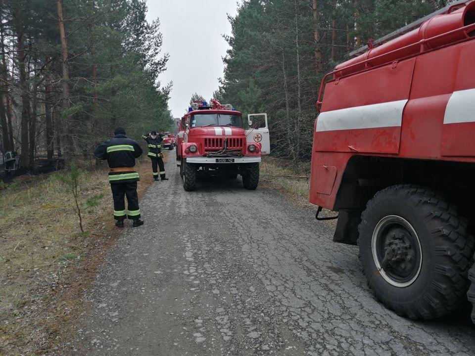 У зоні відчуження ЧАЕС гасять тліючі пеньки та деревину в осередках пройдених вогнем -  - 93407236 3166690166683123 2477302918328352768 o