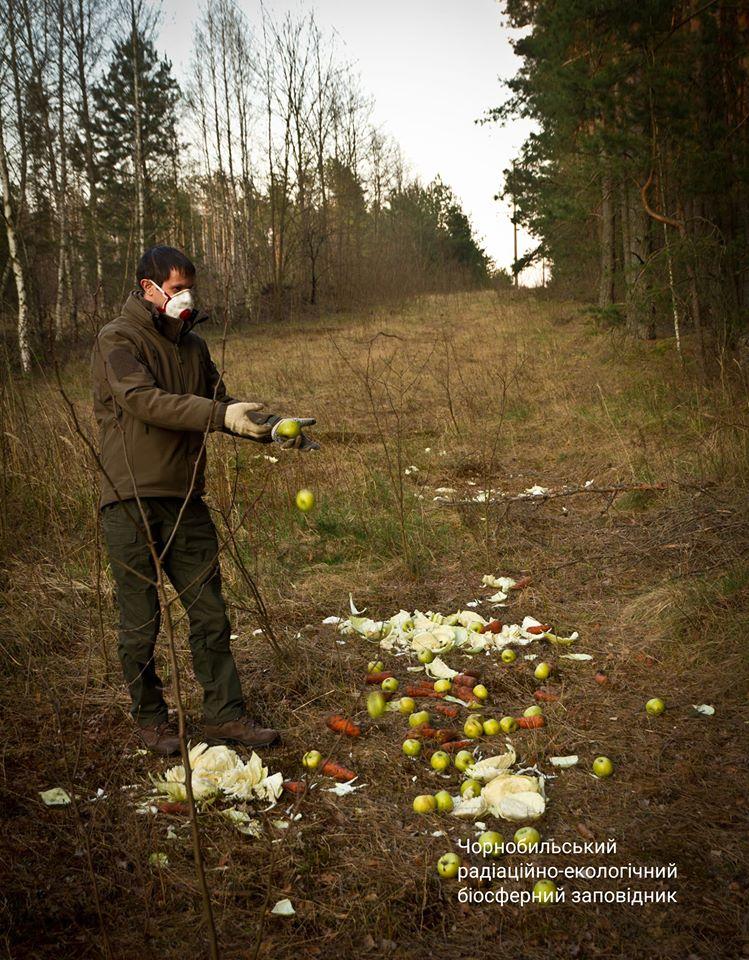 11,5 тис га території Чорнобильського заповідника постраждало від пожеж -  - 93903965 649620588928365 498489984731316224 o
