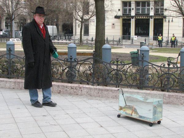 Коза, іграшковий пес, курка, краб і риба: кого вигулюють на карантині іспанці -  - ES1YTg0WAAAWvdx