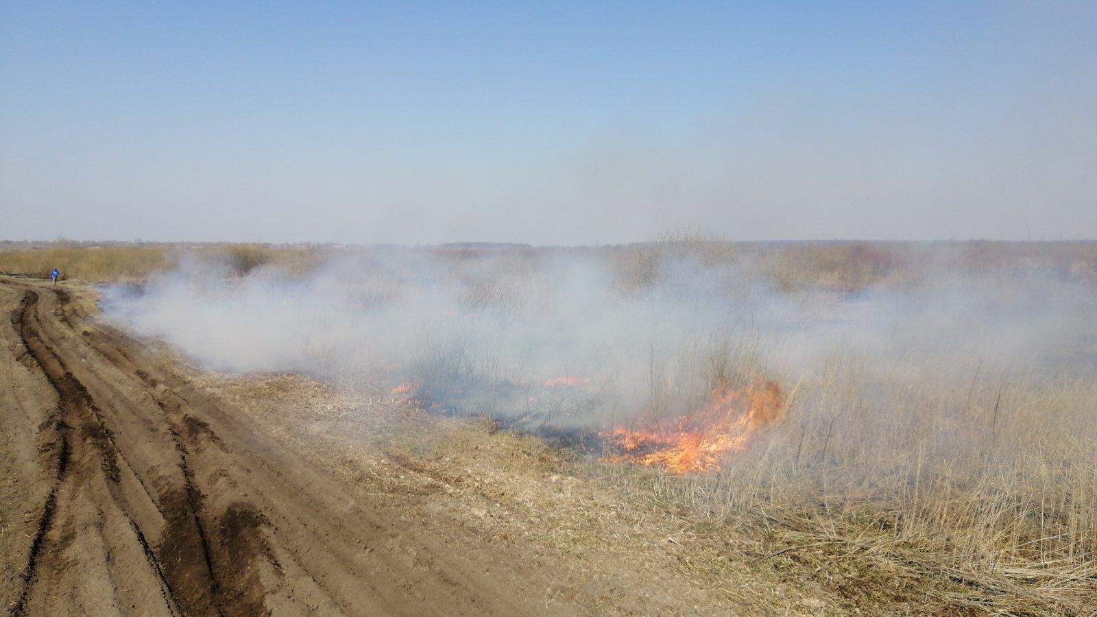 На Броварщині горять торфовища: пожежу локалізовано, ліквідація триває -  - IMG 524d2c9d128da04235bfd54e33e911ef V