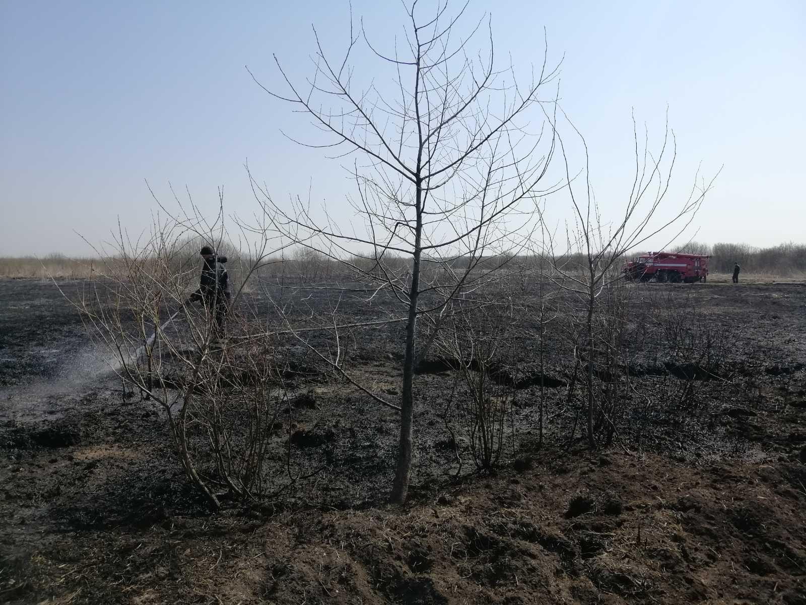 На Броварщині горять торфовища: пожежу локалізовано, ліквідація триває -  - IMG 92501c2acd1fb5f7d4fcdc282782fa53 V