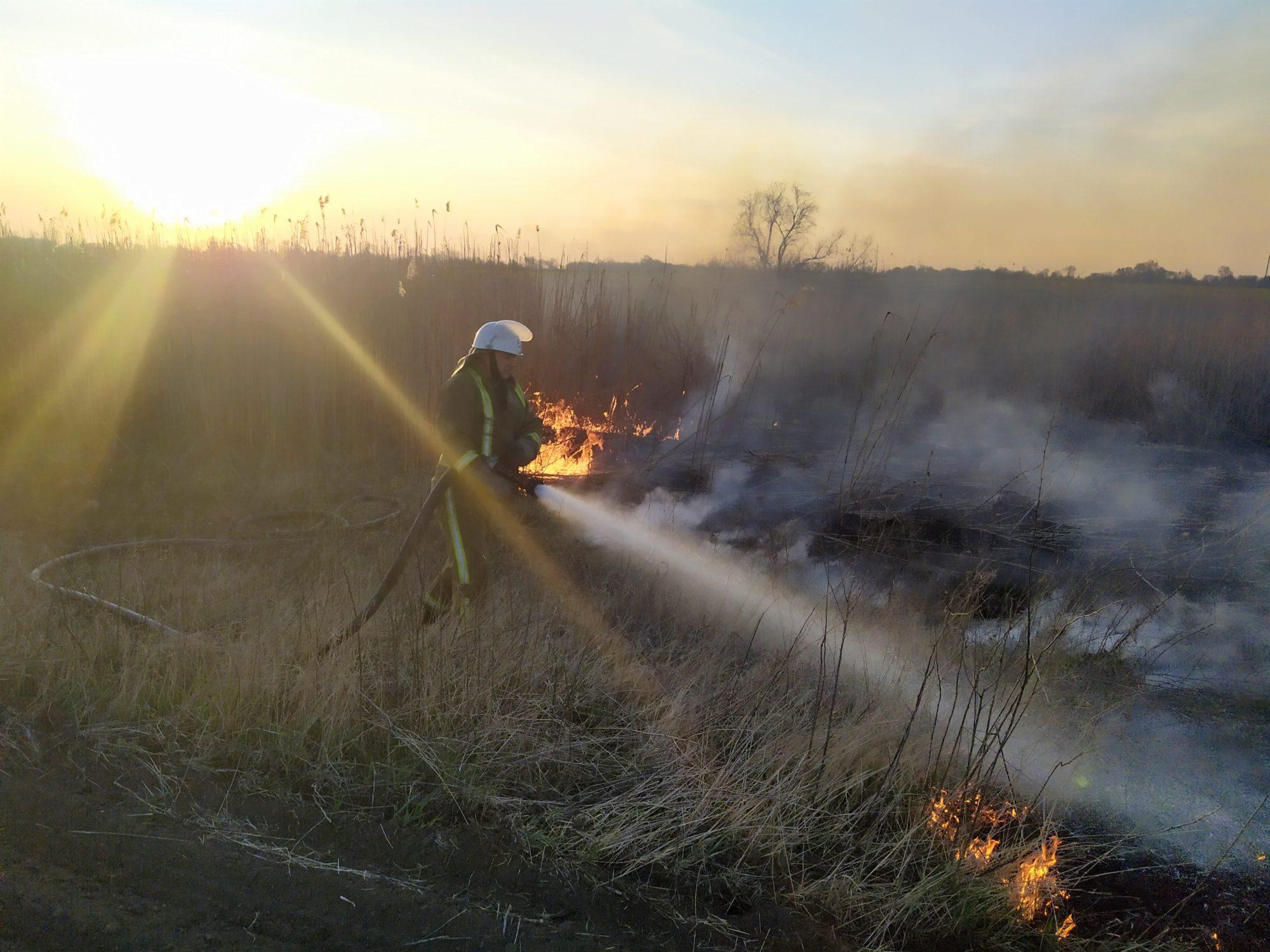 На Білоцерківщині сталось кілька загорань сухої трави та очерету - пожежі в екосистемах, Білоцерківщина - IMG 20200412 191750 2000x1500