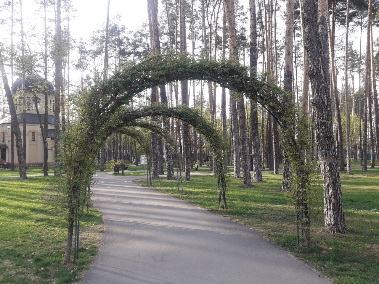 Жителі Ірпеня вимагають відновити обробку лісопаркових зон від кліщів -  - IMG 20200428 144422 595