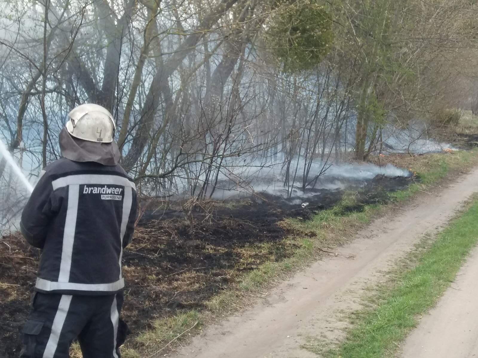 На Білоцерківщині сталось кілька загорань сухої трави та очерету - пожежі в екосистемах, Білоцерківщина - IMG 6959