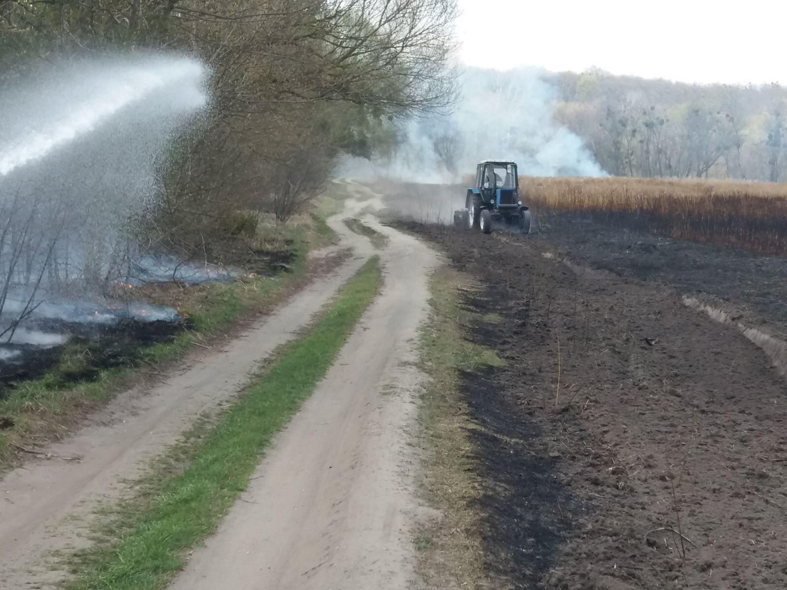 На Білоцерківщині сталось кілька загорань сухої трави та очерету - пожежі в екосистемах, Білоцерківщина - IMG 6962