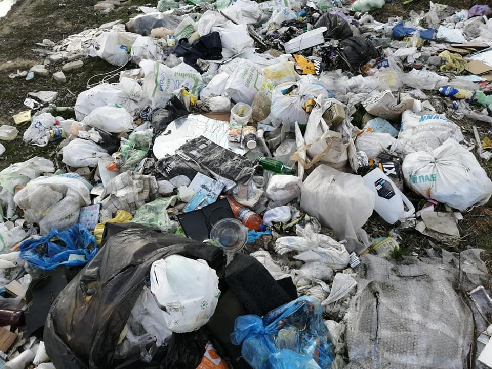 Майже 80 іржавих набоїв знайшли жителі Ірпеня, прибираючи поблизу озера (фото, відео) - толока, Приірпіння, набої, київщина, ірпінь, забруднення довкілля, екологія - Irp irzh patr 3