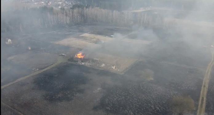 У Переяславі через спалювання трави згоріло 4 гектари лісу -  - Screenshot 7