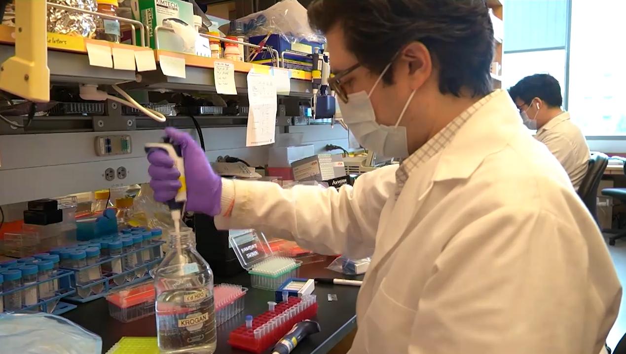 Від коронавірусу в світі розробляють 70 вакцин - коронавірус - Snymok ekrana 193