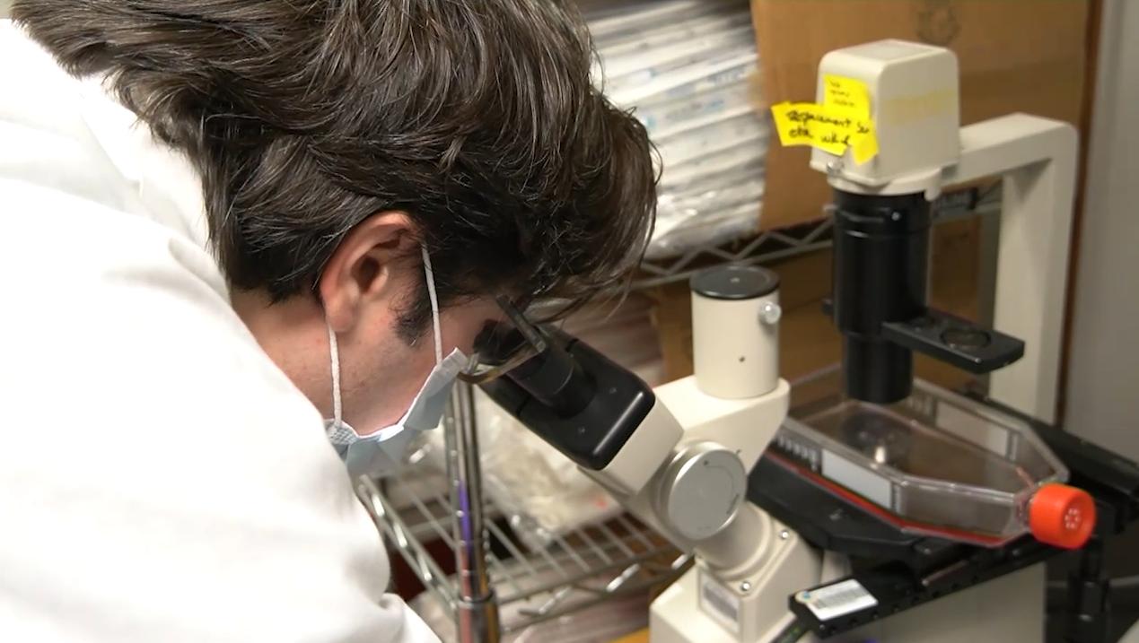 Від коронавірусу в світі розробляють 70 вакцин - коронавірус - Snymok ekrana 195