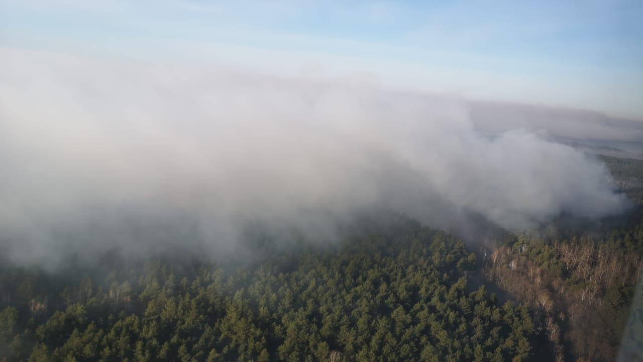 У зоні відчуження Чорнобильської АЕС продовжують гасіння пожеж -  - What2