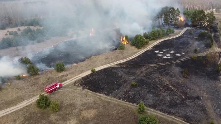 У Переяславі через спалювання трави згоріло 4 гектари лісу -  - o 1e4oedaehl8i121v7lilkcqh82v