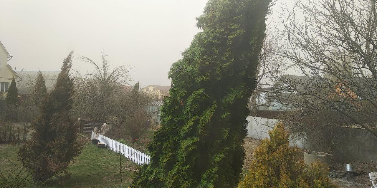 Краще залишайтесь вдома: 16 квітня пориви вітру в Україні можуть досягати 17-22 м/с - шквал, заморозки, вітер - photo5242287690106384049