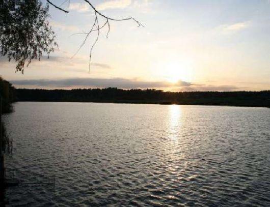 Прокуратура в суді вимагає повернути державі пів гектара земель на Обухівщині -  - photo 2 2248670