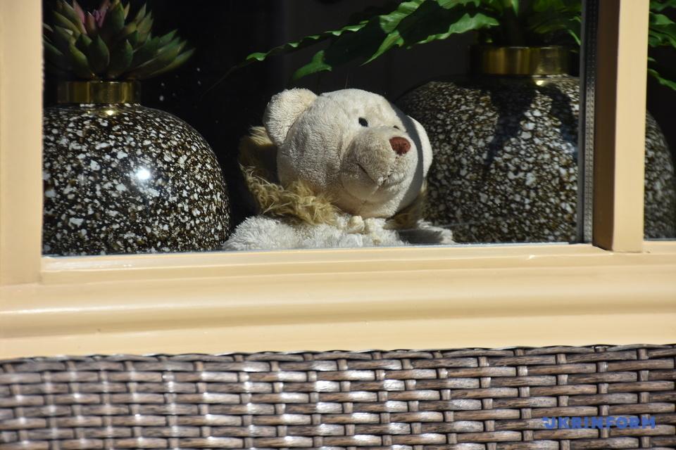 """""""Полювання"""" на ведмедиків у Нідерландах: розваги під час карантину - Нідерланди - vedmid3"""