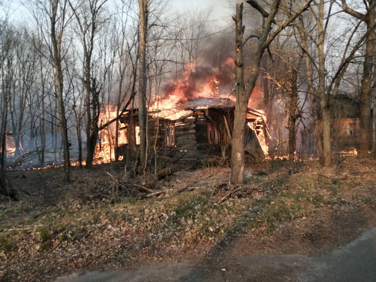 У Зоні відчуження продовжуються пожежі (ФОТО, ВІДЕО) - пожежі, Зона відчуження - viber image 2020 04 09 19 44 25