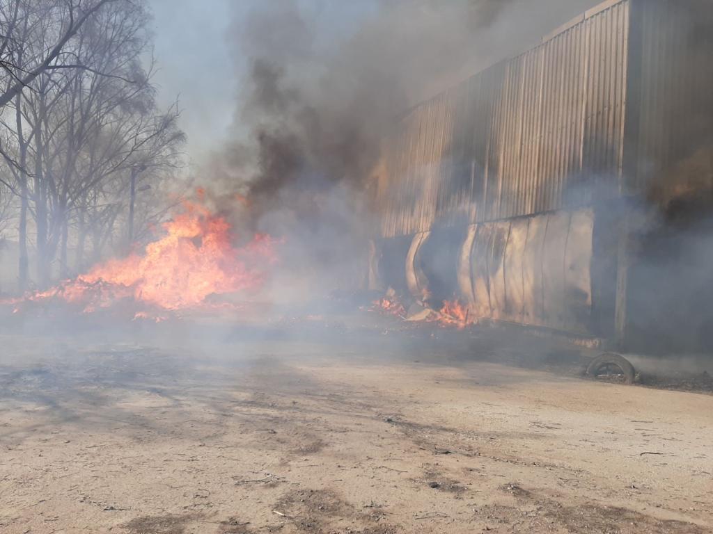 Загоряння трави спричинило масштабну пожежу овочесховища в Броварах -  - yzobrazhenye viber 2020 04 02 17 02 01