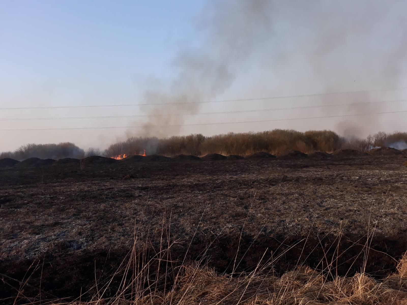 7 квітня на Броварщині зафіксовано п'ять пожеж в екосистемах -  - yzobrazhenye viber 2020 04 07 23 39 26