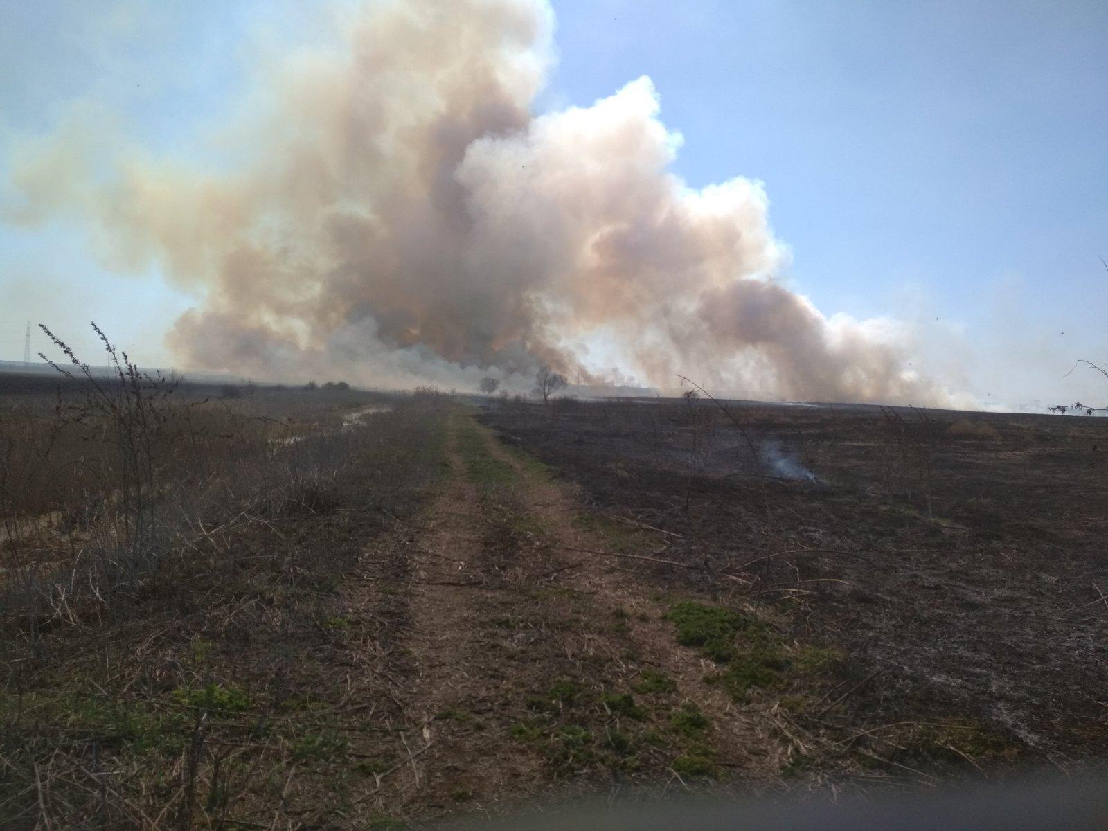 На Броварщині рятувальники борються з пожежами в екосистемах -  - yzobrazhenye viber 2020 04 09 20 51 04 1