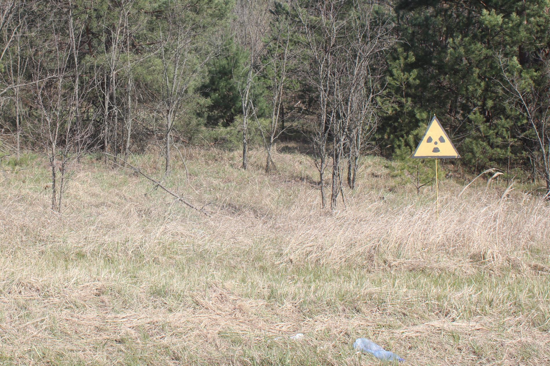 У Чорнобилі ще тліють 4 осередки - Чорнобиль - zona 1