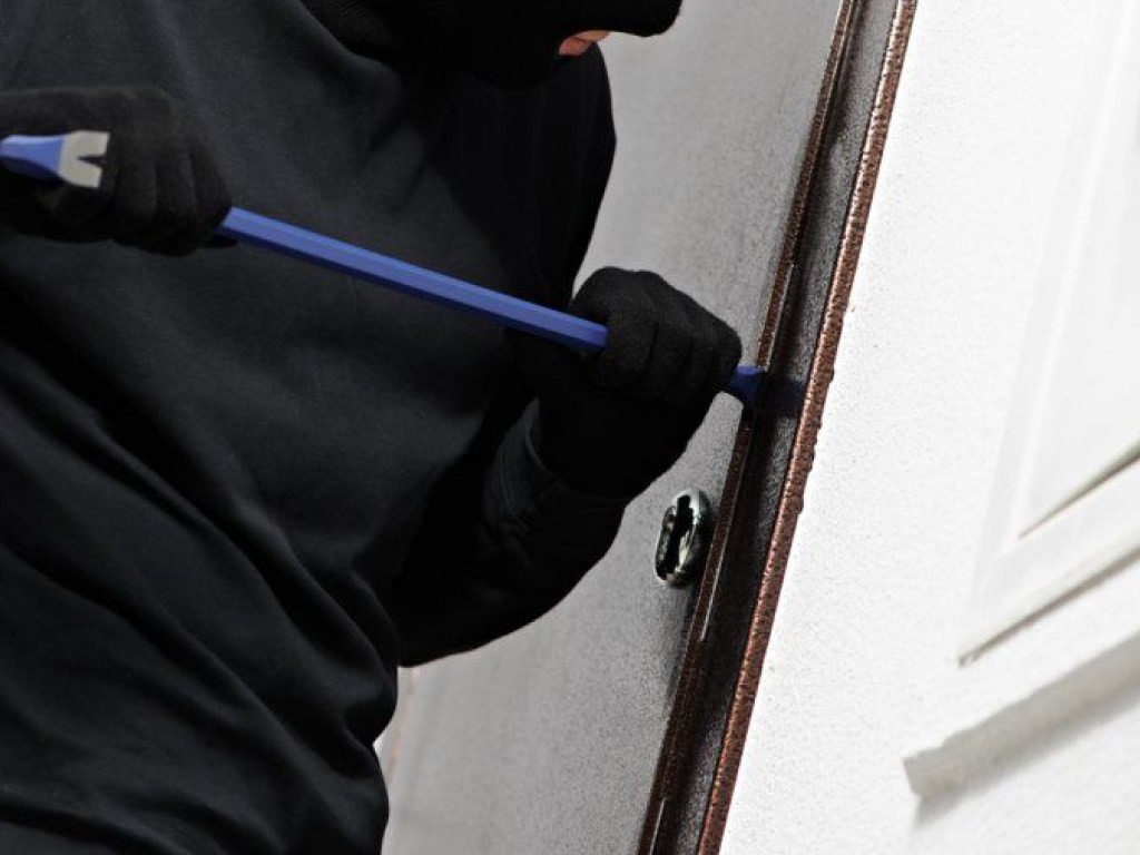 Родинна «справа»: у Бородянці спіймали серійних крадіїв - крадій - 25 vor 1