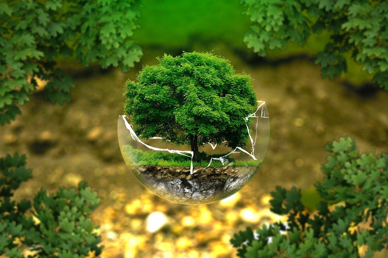 Мінекоенерго розділили: тепер екологія та енергетика окремо - Мінприроди - 27 mynpryrody