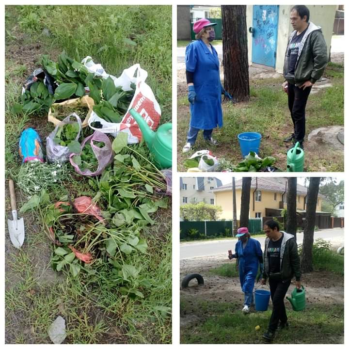 Жителі Ірпеня висадили у парку Стельмаха лісові квіти -  - FB IMG 1590383134116