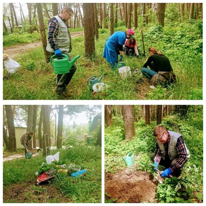 Жителі Ірпеня висадили у парку Стельмаха лісові квіти -  - FB IMG 1590383143719