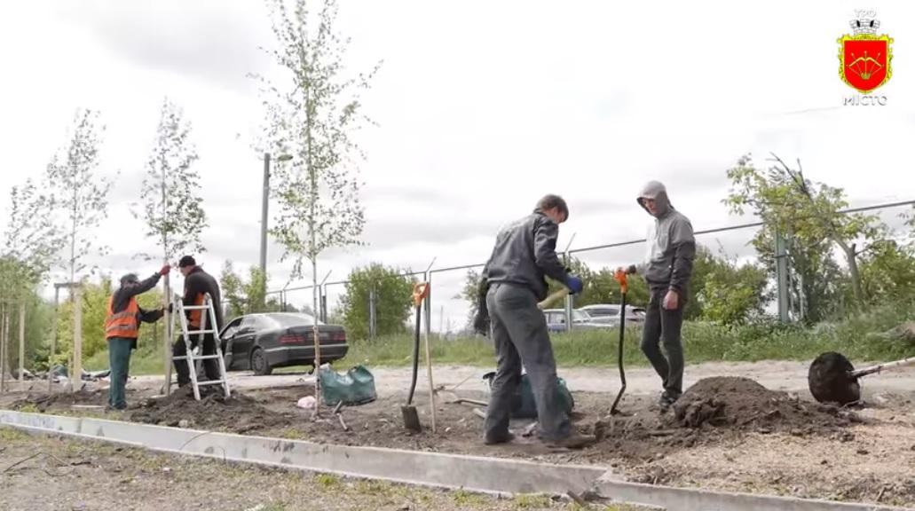 Park4 Зелена Біла Церква: у місті закладають новий парк та реконструюють сквер