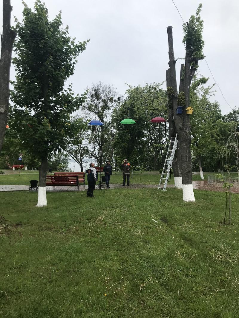 Літаючі парасольки в Яготині: у міській алеї – нова інсталяція - Яготинський район, Яготин, київщина - Yagotyn parasol 2
