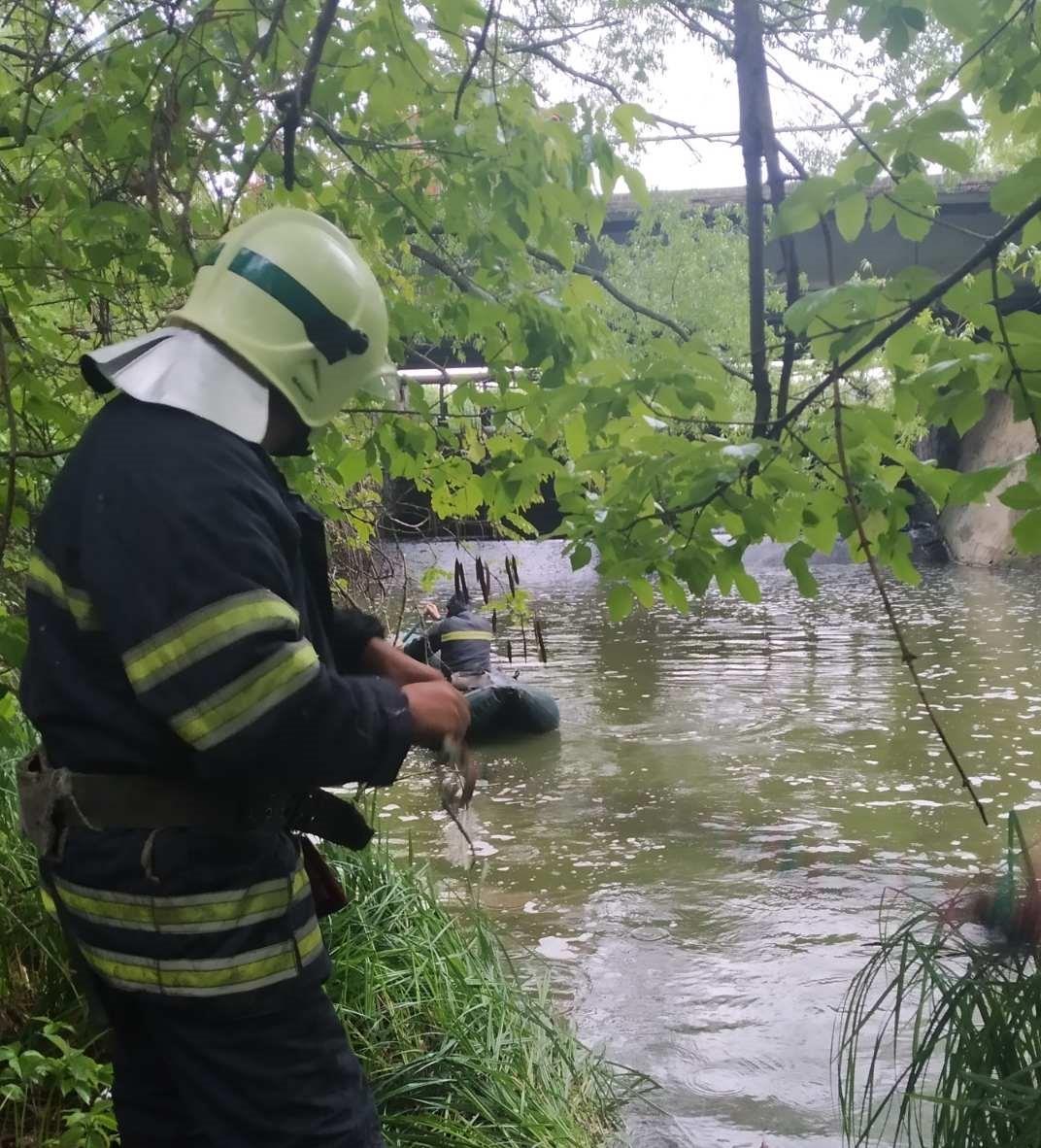 На Фастівщині втопилась жінка - Фастівський район, Кожанка - foto 1