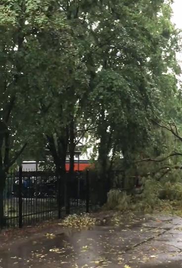 У Глевасі на Васильківщині негода наробила лиха -  - Snymok ekrana 388