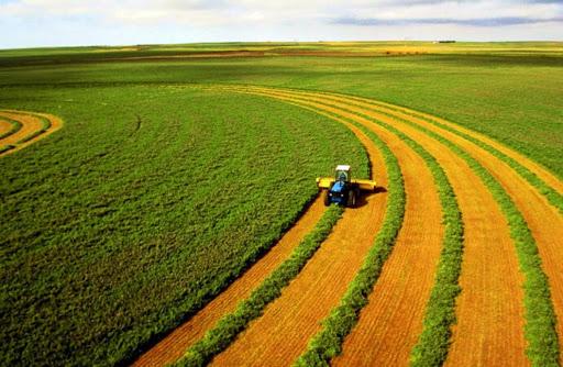 Верховна Рада внесла зміни до Земельного кодексу України - Земля, закон - unnamed 9