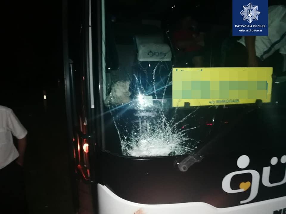 Автобус проти лося: ДТП на Васильківщині -  - 106462331 1806832596156992 3756692243470116675 n