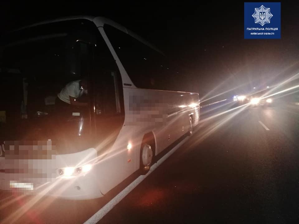 Автобус проти лося: ДТП на Васильківщині -  - 82001013 1806832639490321 802923143418166813 n