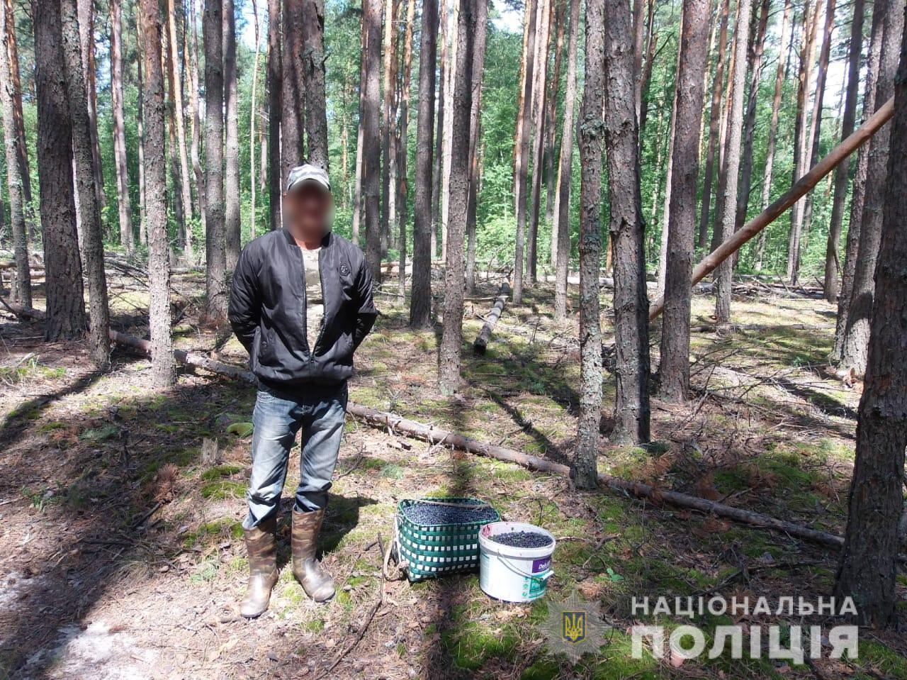 У збирачів в зоні відчуження ЧАЕС вилучено 300 кг ягід та 20 кг грибів - ЧАЕС, Поліція, Зона відчуження - CHornytsya 1