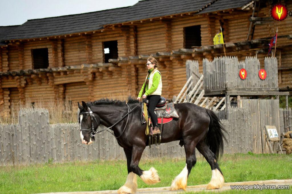 """Парк Київська Русь, що на Обухівщині, запрошує на шоу-програму """"Світ коней"""" -  - girls riding"""