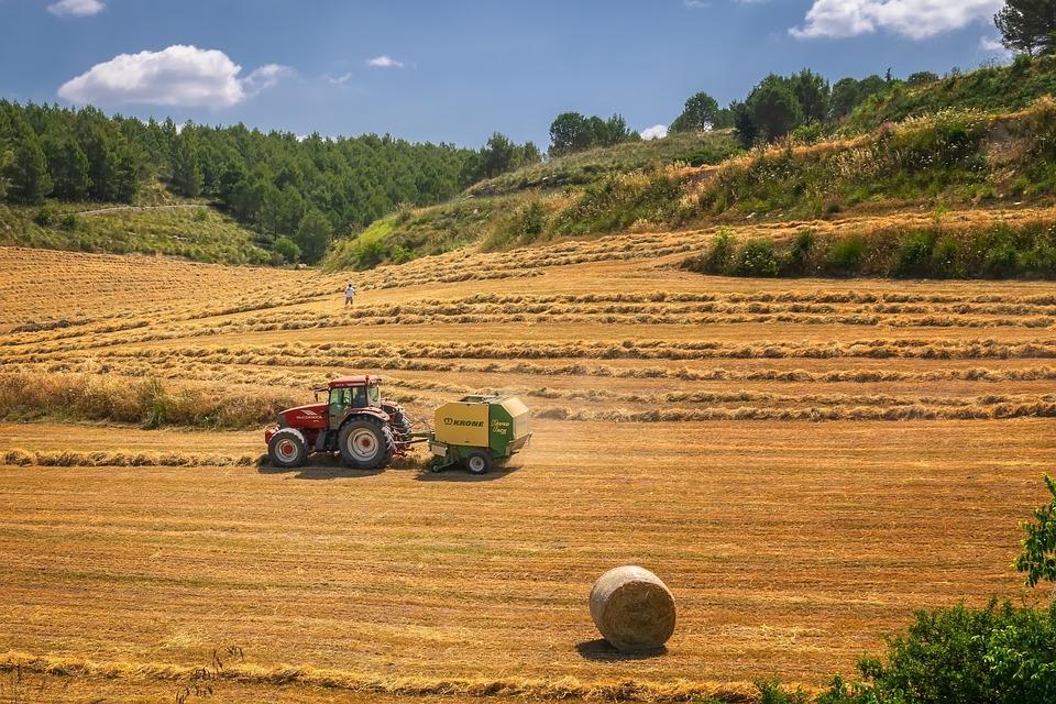 Кількість жителів українських сіл невпинно зменшується - статистика, село, зайнятість, безробіття - harvest 3914269 960 720