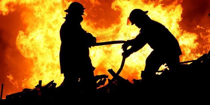 У Поліському районі вогонь знищив автівку - Поліський район, ДСНС, ВАЗ - pzz