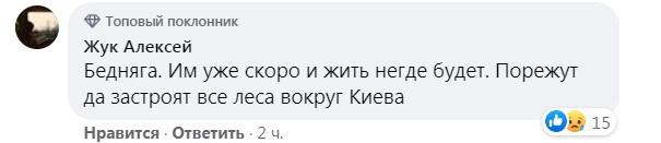 На вулицях Києва бачили лося (ВІДЕО) - лось європейський, лось - 04 los2