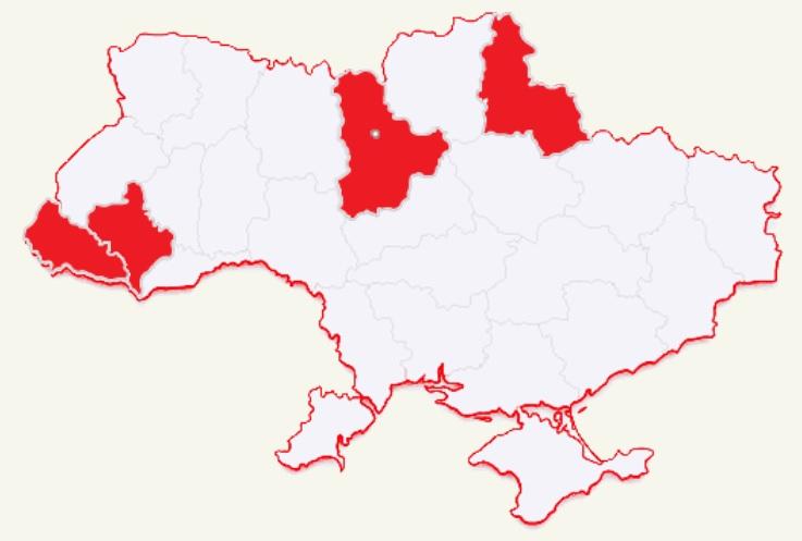 В дикій природі України залишилося всього 200 ведмедів - клишногий, захист тварин, ведмідь, бурий ведмідь - 06 myshka