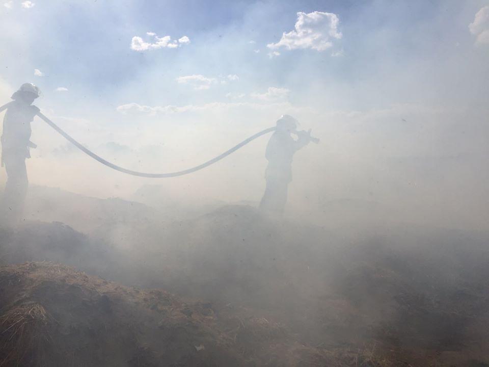 Київщина: за добу згоріло 45 га трав'яного настилу -  - 118066784 3513344692017667 7596263170179118199 o