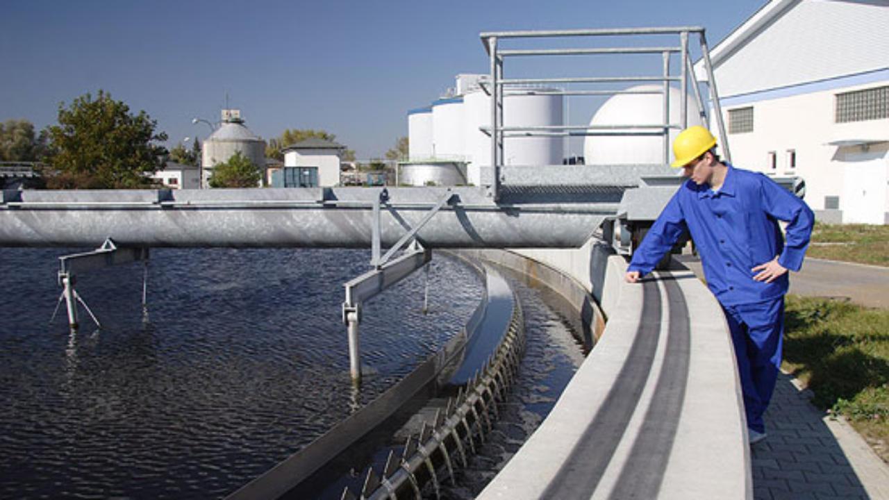Шкода довкіллю: 4,4 млн грн збитків має сплатити фірма у Києві - Київ, збитки, екологія, довкілля - 13420