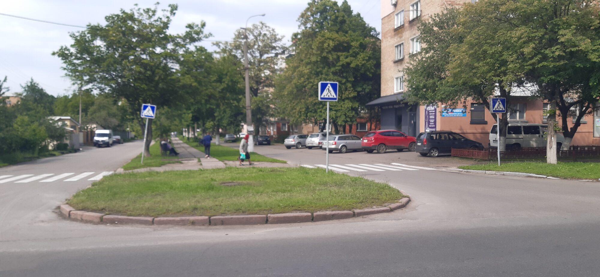 В Борисполі виявили три випадки котячого сказу - сказ, Бориспіль - 20200605 162725 2000x924