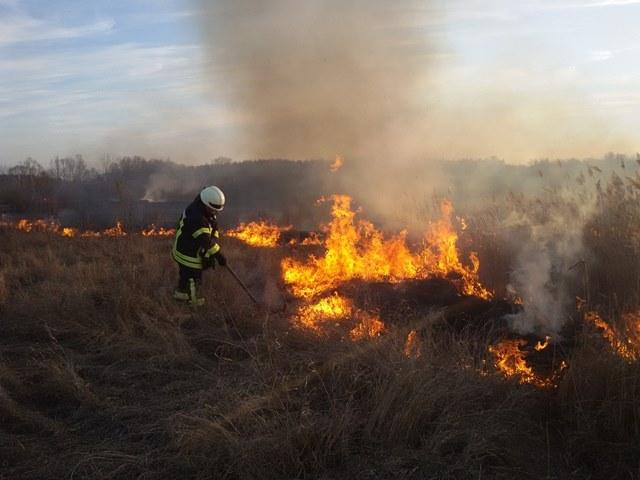 Жителі Сквирщини завдають шкоди довкіллю -  - 57111067 2168103479936249 6126131941293948928 n