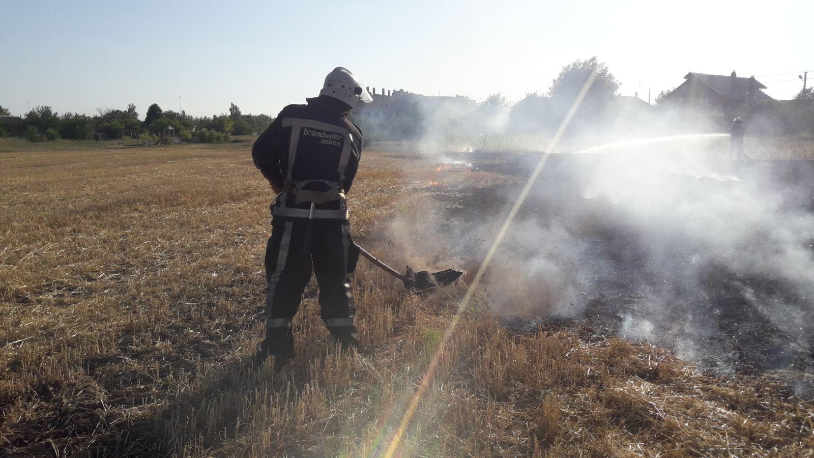 В Сквирському районі масово горять поля - сквира пожежі, Сквира, ГУ ДСНС у Київськійобласті - IMG 16e21d9e40961bc40a2b46495cb186ee V