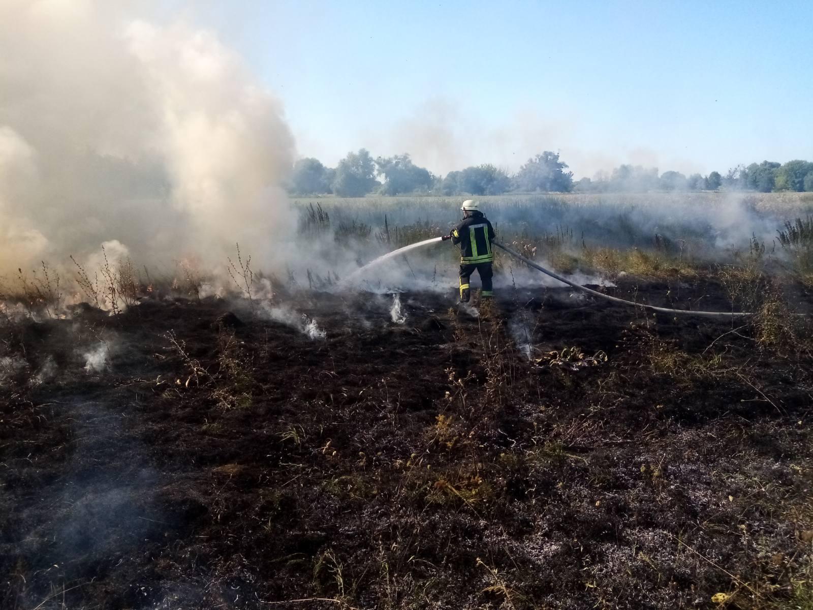 За вихідні на Київщині 35 разів горіла екосистема - пожежі в екосистемах, київщина, ГУ ДСНС у Київськійобласті - IMG 653cd452bff2dd48dc9cef98a08c4c5d V