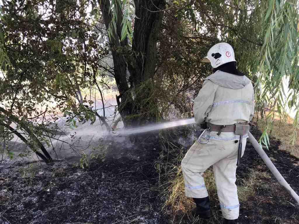 Жителі Сквирщини завдають шкоди довкіллю -  - IMG ace99fc5f92701cfeab4b339ca6dc69f V