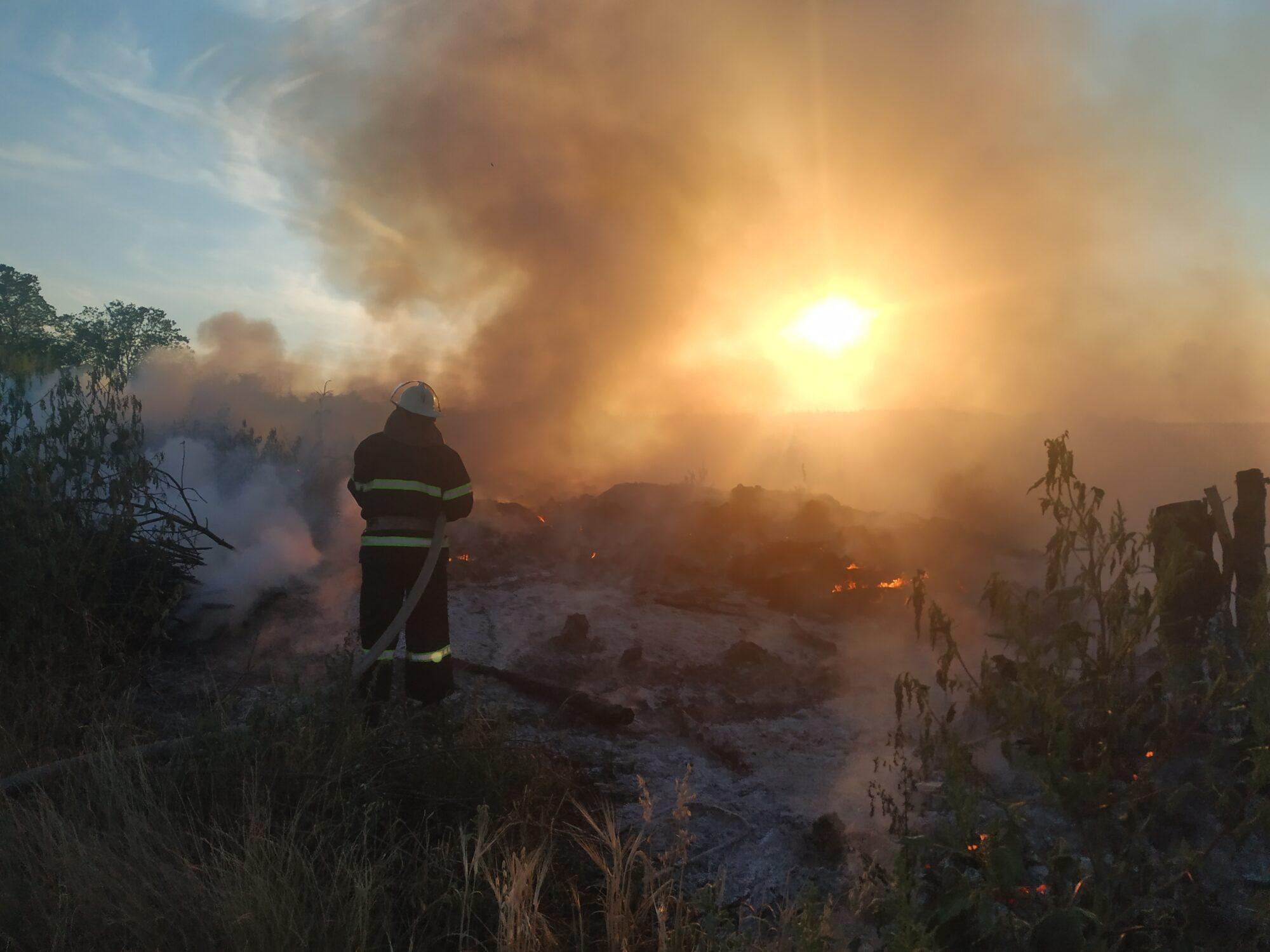 За вихідні на Київщині 35 разів горіла екосистема - пожежі в екосистемах, київщина, ГУ ДСНС у Київськійобласті - IMG 20200815 193547 2000x1500
