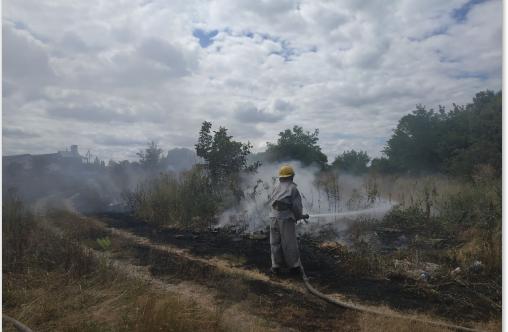 На Сквирщині вирують пожежі - Сквира, пожежі, ГУ ДСНС у Київськійобласті, вогонь - Screenshot 5 2